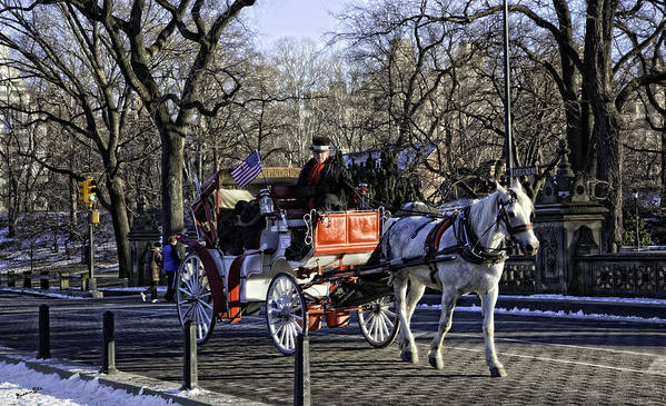 Carriage Print featuring the photograph Carriage Driver - Central Park - Nyc by Madeline Ellis