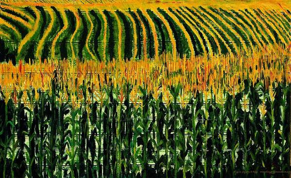 Corn Art Print featuring the painting Cash Crop Corn by Gregory Allen Page
