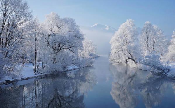 Winter Art Print featuring the photograph Coldest Morning by Norbert Maier