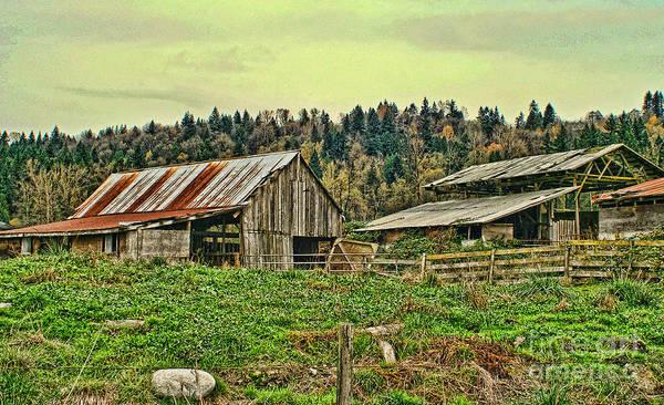 Barn Art Print featuring the photograph Old Farm by Dawn Harris