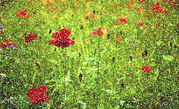 Poppy Art Print featuring the digital art Poppies by Ronald Jansen