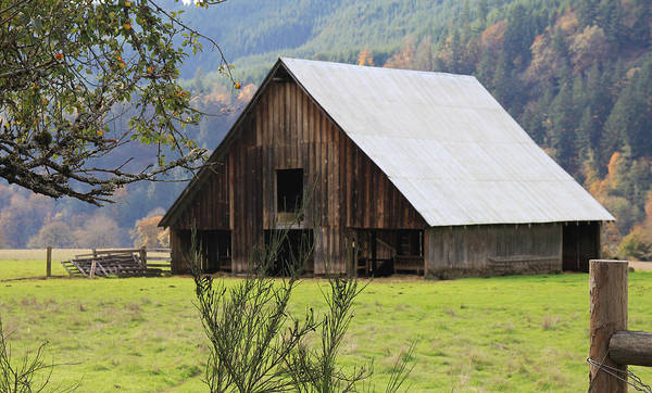Wood Art Print featuring the photograph Sheep Barn by Katie Wing Vigil