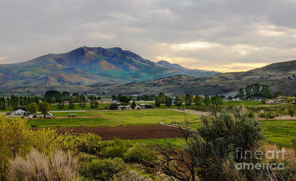 Gem County Art Print featuring the photograph Spring Time In The Valley by Robert Bales