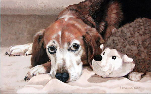 Dog Art Print featuring the painting Zeppy And Lovey by Sandra Chase