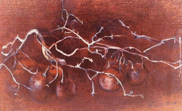 Still Life Pencil Drawing Art Print featuring the painting    Yesterday's Grapes by Trudy Brodkin Storace