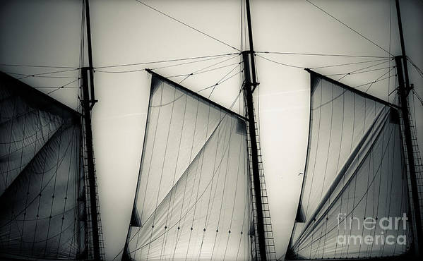Sails Art Print featuring the photograph 3 Sails In Monotone Of An Old Sailboat by Emilio Lovisa