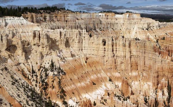 Sandra Bronstein Art Print featuring the photograph Bryce Canyon Vista by Sandra Bronstein