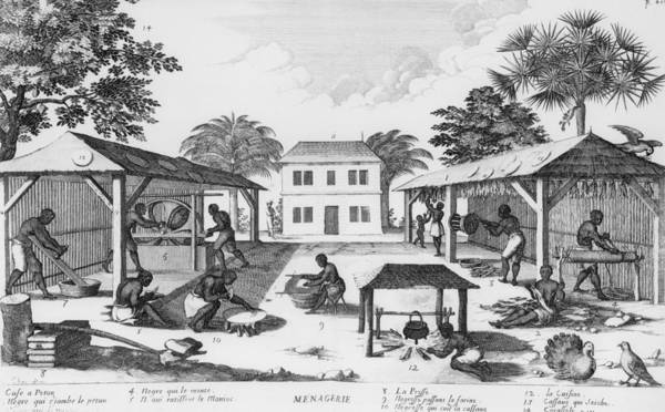 History Art Print featuring the photograph Daily Life For Enslaved Africans by Everett