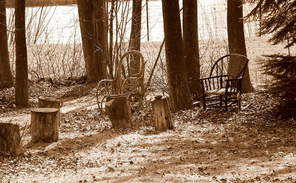 Chair Art Print featuring the photograph Rustic Living by Shelley Blair