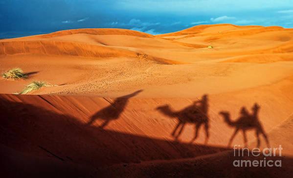 Adventure Art Print featuring the photograph Shadows Of Desert by Alexandra Jordankova