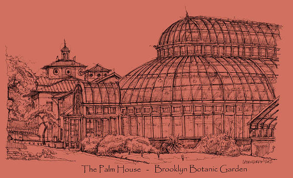 Palm Art Print featuring the drawing The Palm House In A Salmon Pink by Building Art