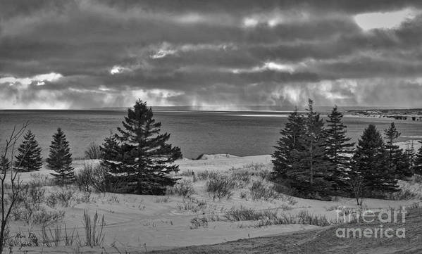 Art Print featuring the photograph Landscape by Marc Thibault