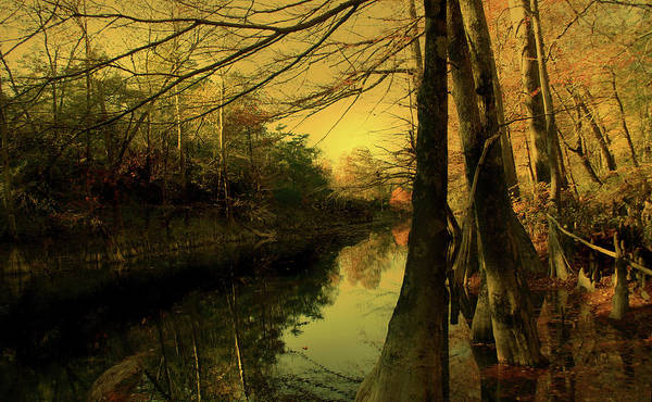 River Art Print featuring the photograph A Vision Of Autumn by Nina Fosdick