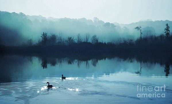 Blue Posters Art Print featuring the photograph Calming Water by Gina Signore