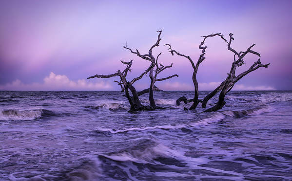 Ocean Art Print featuring the photograph Driftwood In The Waves by Kim and Joe Brownfield
