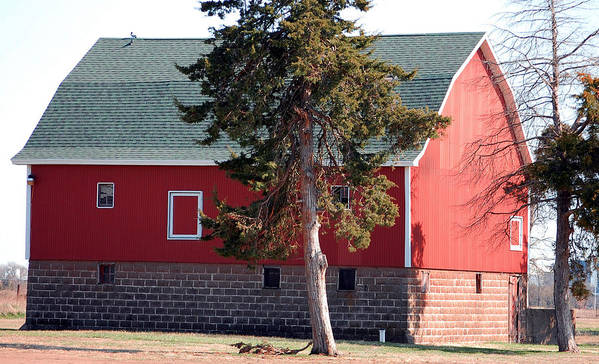 Barn Art Print featuring the photograph Family Barn by Jame Hayes