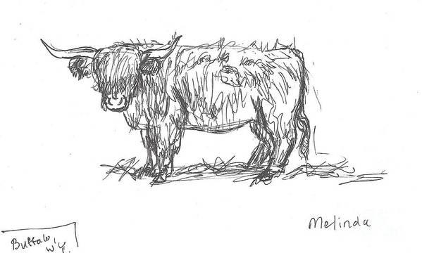 Highland Cow Field Sketch Art Print