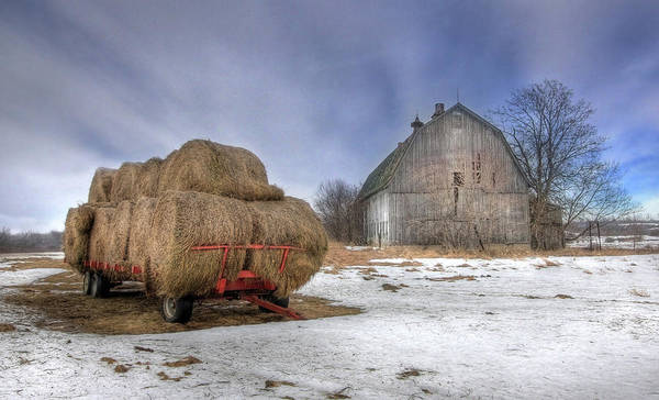 Old Barn Art Print featuring the photograph Let 'em Roll by Lori Deiter