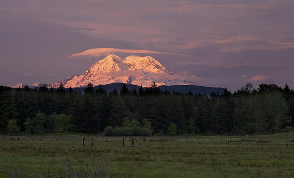 Mount Rainier Art Print featuring the photograph Rainier Dusk by Mike Reid