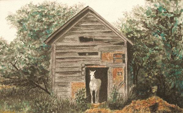 Original Watercolor Print featuring the painting Solitaire Near Enterprise. Solitary Horse Looking Out From Barn Door by Lynn ACourt