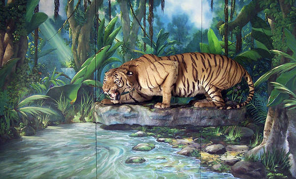 Bengal Tiger Art Print featuring the painting Tony by Steven Welch