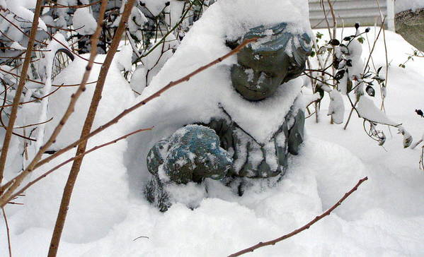 Snow Art Print featuring the photograph Under Cover by Christine Sullivan Cuozzo