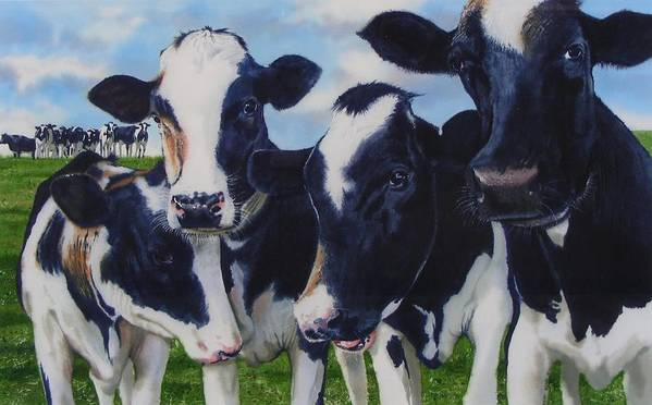 Cows Art Print featuring the painting Up Front by Denny Bond