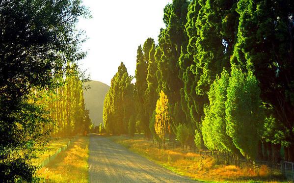 Wanaka Art Print featuring the photograph Wanaka Morning Light by Kevin Smith