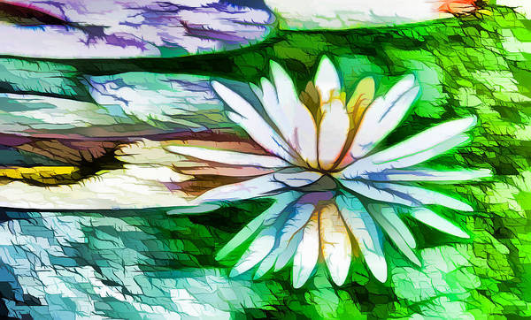 White Lotus In The Pond Art Print featuring the painting White Lotus In The Pond by Jeelan Clark