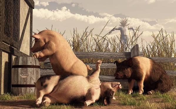 Pig Art Art Print featuring the digital art Drunken Pigs by Daniel Eskridge