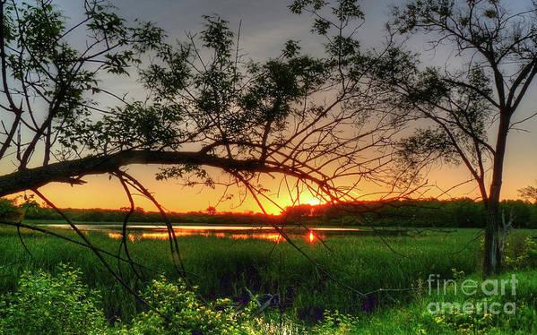 Sunset Art Print featuring the photograph Fiery Swamp Sunset by Deborah Smolinske