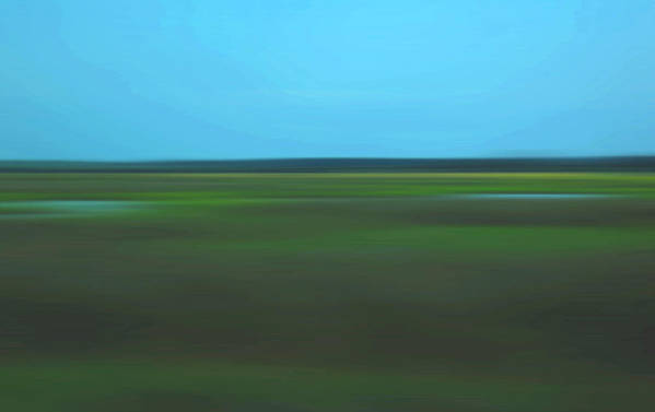 Abstract Art Print featuring the photograph Marsh Blur by Suzanne Gaff
