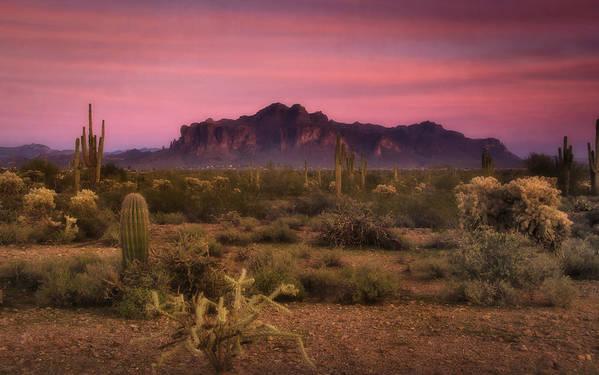 Sunset Print featuring the photograph Paint It Pink Sunset by Saija Lehtonen