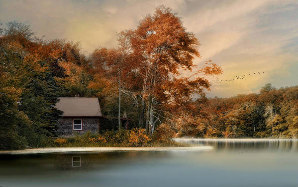 Landscape Art Print featuring the photograph River View by Robin-Lee Vieira
