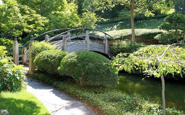 Photography Art Print featuring the photograph Japanese Garden Bridge by Lynnette Johns