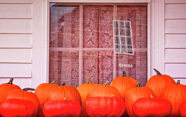Bonnyvale Road West Brattleboro Vermont Art Print featuring the photograph Pumpkins Curtains Red Barn by Tom Singleton