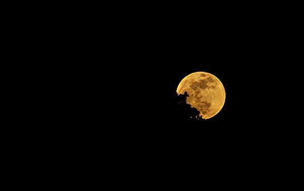 Moon Art Print featuring the photograph Supermoon 2012 by James Stodola