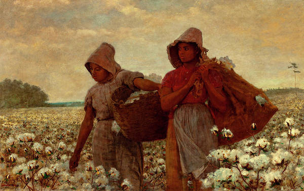 The Cotton Pickers Art Print featuring the painting The Cotton Pickers by Winslow Homer