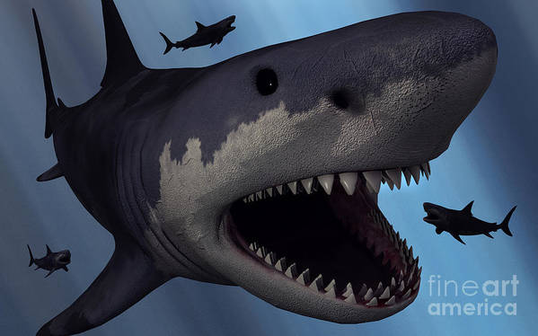 Carcharodon Art Print featuring the digital art A Megalodon Shark From The Cenozoic Era by Mark Stevenson