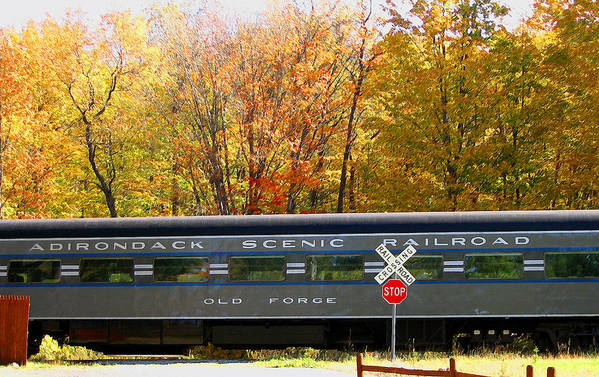 Trains Art Print featuring the photograph Adirondack Scenic Railroad by Steve Ohlsen
