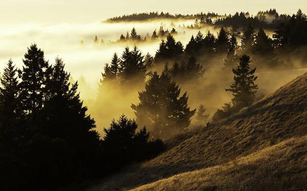 Horizontal Art Print featuring the photograph Bolinas Ridge by Lance Kuehne