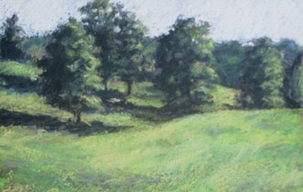 Landscape Art Print featuring the painting High Summer Pasture by Dolores Holt