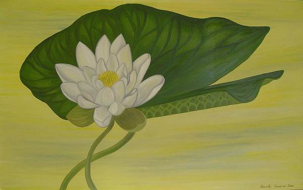 Marinella Owens Art Print featuring the painting Nymphaea Alba by Marinella Owens