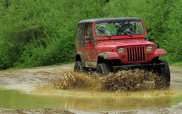 Hovind Art Print featuring the photograph Playing In The Mud by Scott Hovind