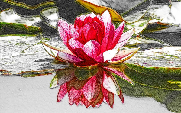Red Lotus Flower Art Print featuring the painting Red Lotus Flower by Jeelan Clark