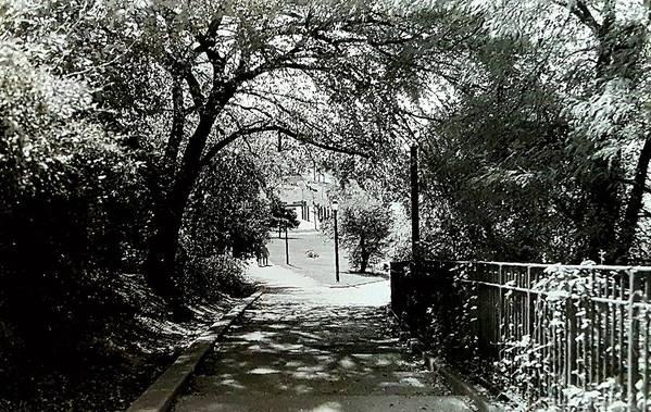 Landscape Art Print featuring the photograph Tranquil Walk by Elizabeth La Caille