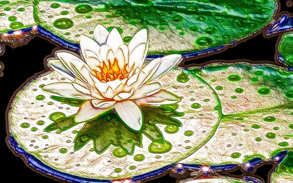 Flower Art Print featuring the painting White Water Lilies Flower by Jeelan Clark