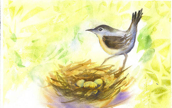 Wren Art Print featuring the painting Wren by Ruth Bevan