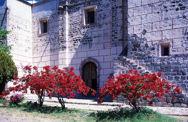 Stone Art Print featuring the photograph Bougainvillea And Stone Wall by Bernard Barcos