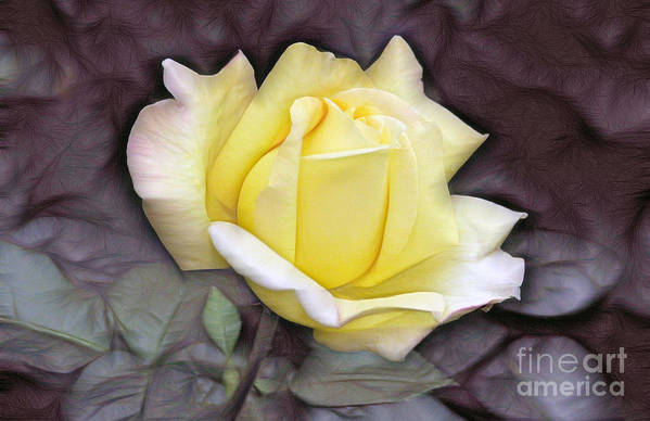 Rose Art Print featuring the digital art Yellow Rose by Odon Czintos